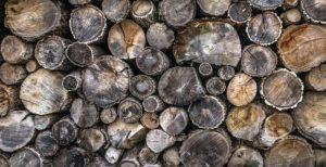 store firewood