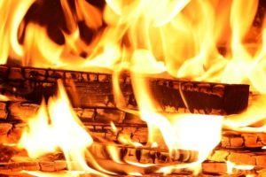 choosing the right firewood for your fireplace champion chimneys